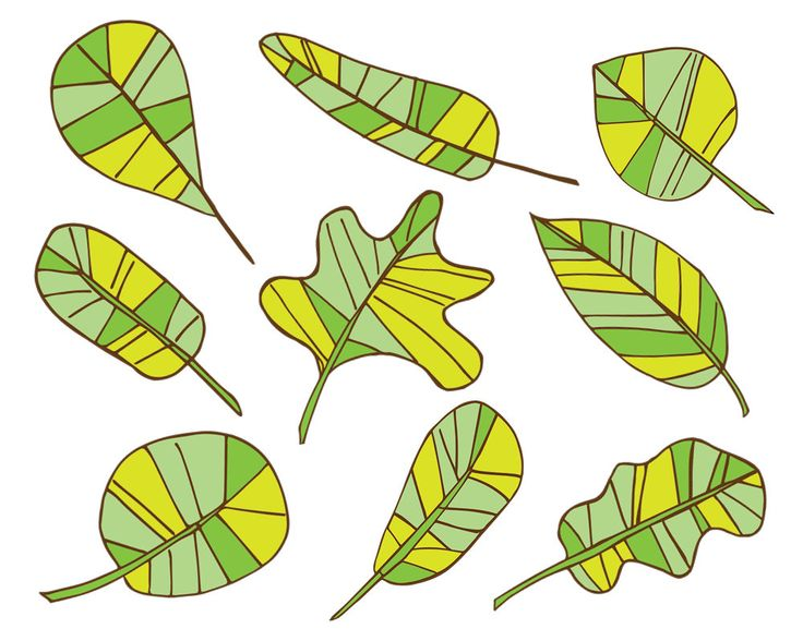 Spring Clipart, Lime Leaves Clipart, Green Leaves Clipart, Spring.