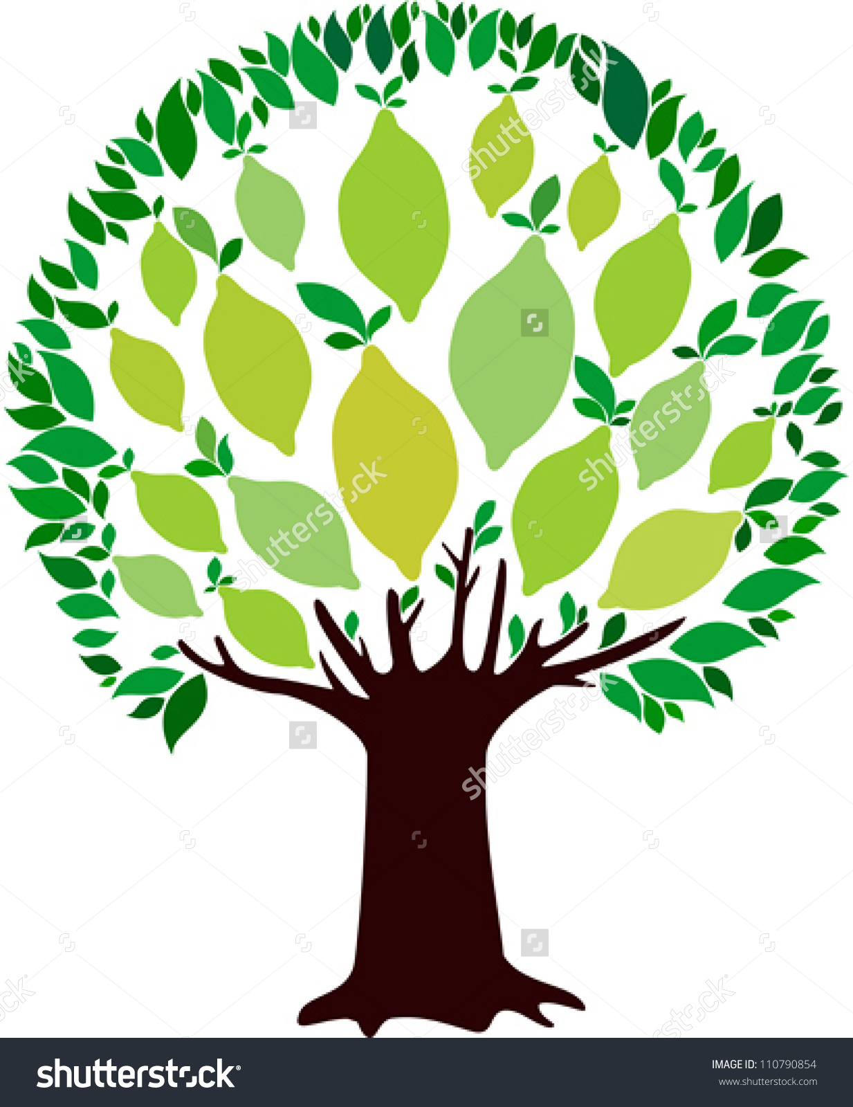 Lime Tree Isolated On White Background Stock Vector 110790854.