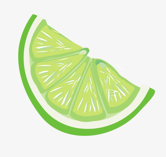 Lime Slice Clipart.