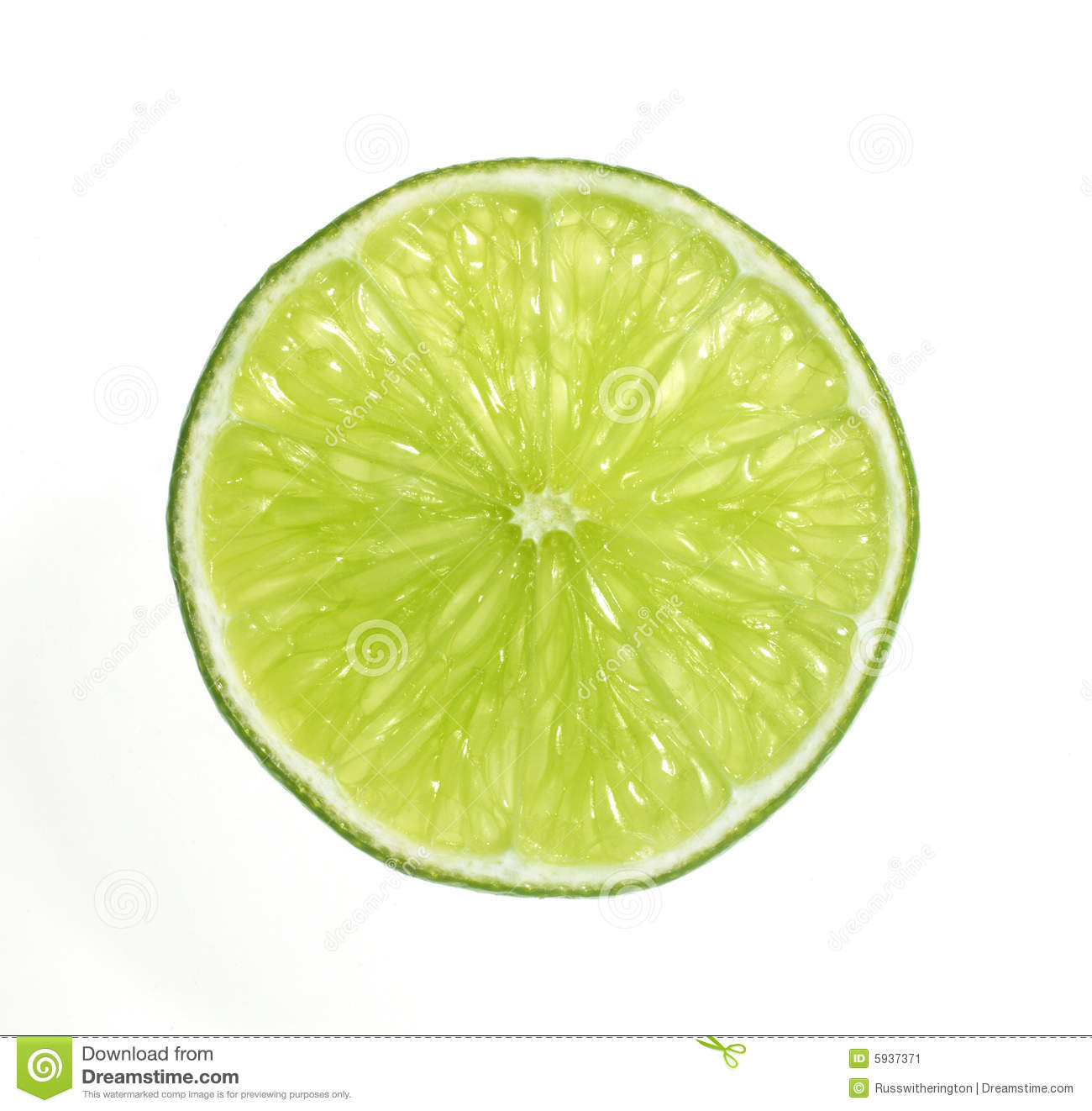 Lime Slice Clipart.