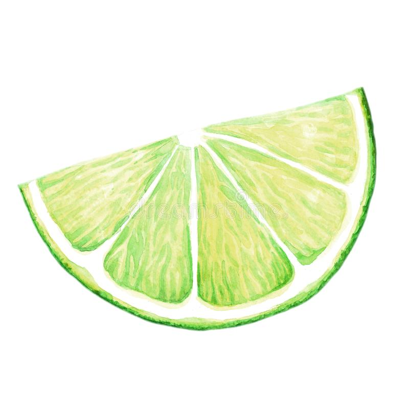 Lime Wedges Stock Illustrations.