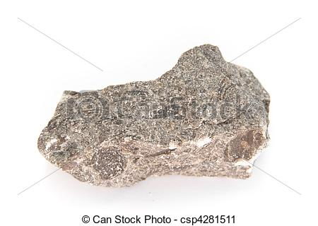 Stock Photography of limestone with nummulites.
