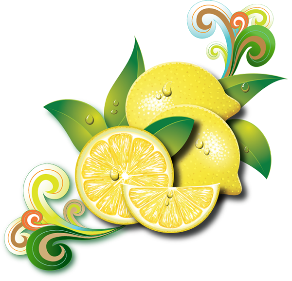 YEDİGÜN Limonetto on Behance.