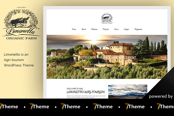 Limonetto ~ WordPress Themes on Creative Market.