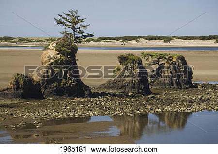 Stock Photography of rock formations at low tide along a rocky.