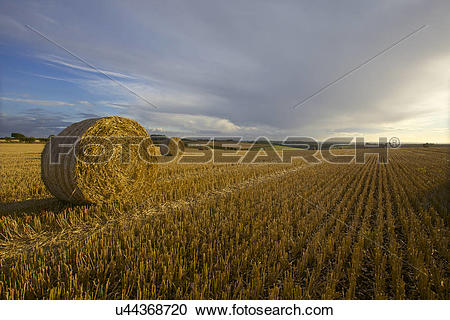 Stock Photography of England, Lincolnshire, Louth. Lincolnshire.