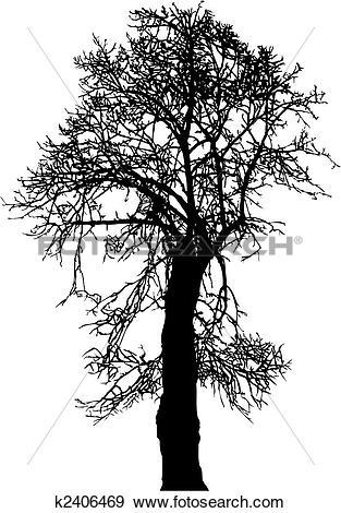 Clip Art of Linden Tree k2406469.