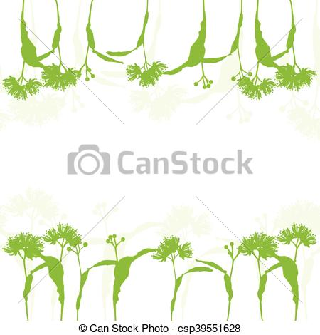 Vector Illustration of Linden flowers ecology background vector.