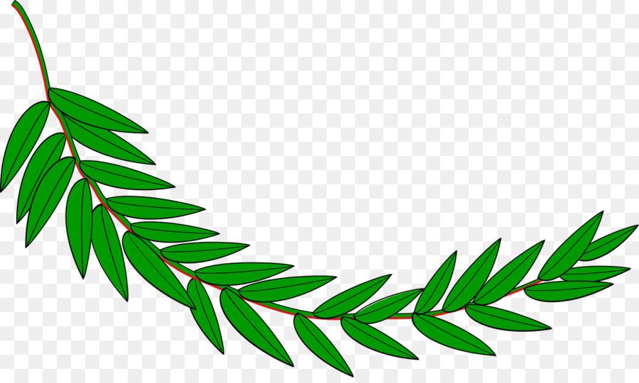Laurel Leaf clipart.