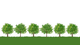 Line Of Trees Clipart.