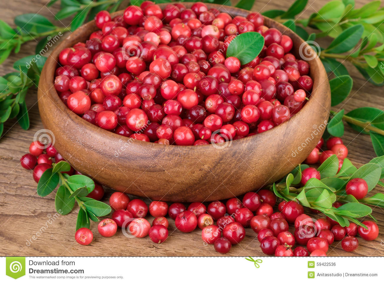Cowberry Lingonberry In Wooden Bowl Stock Photo.