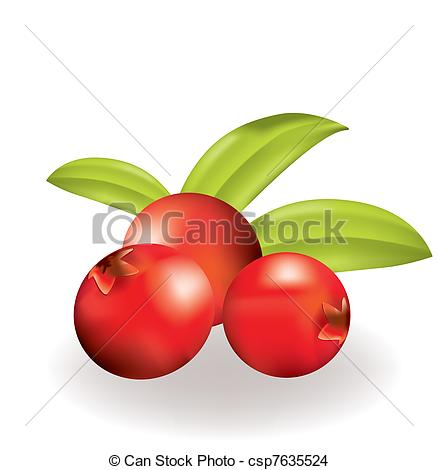EPS Vector of Cowberries.