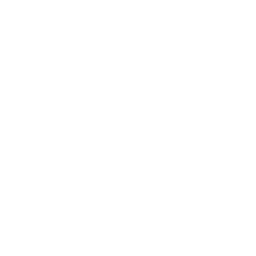 White linkedin 5 icon.