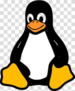 Simple Linux Logo, black and white penguin transparent.