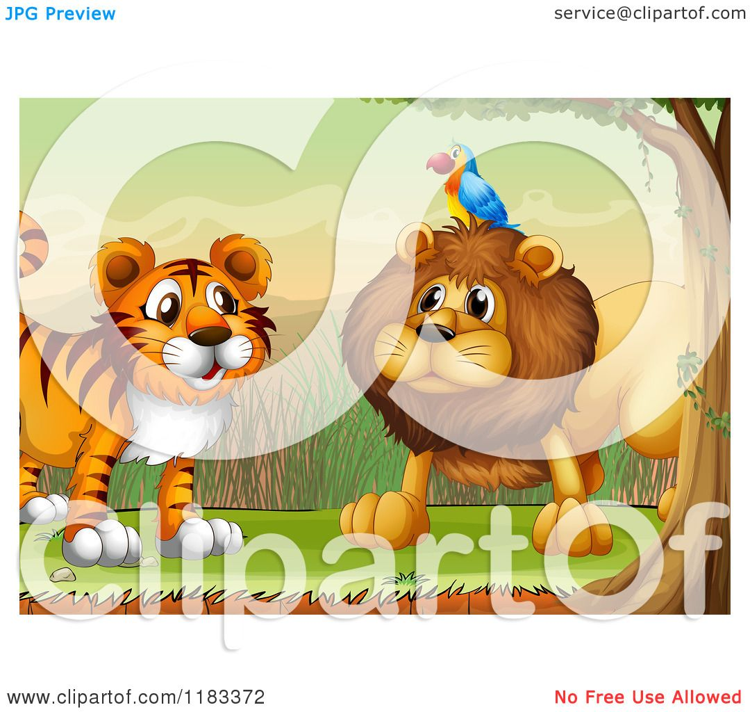 lion and tiger clipart #9