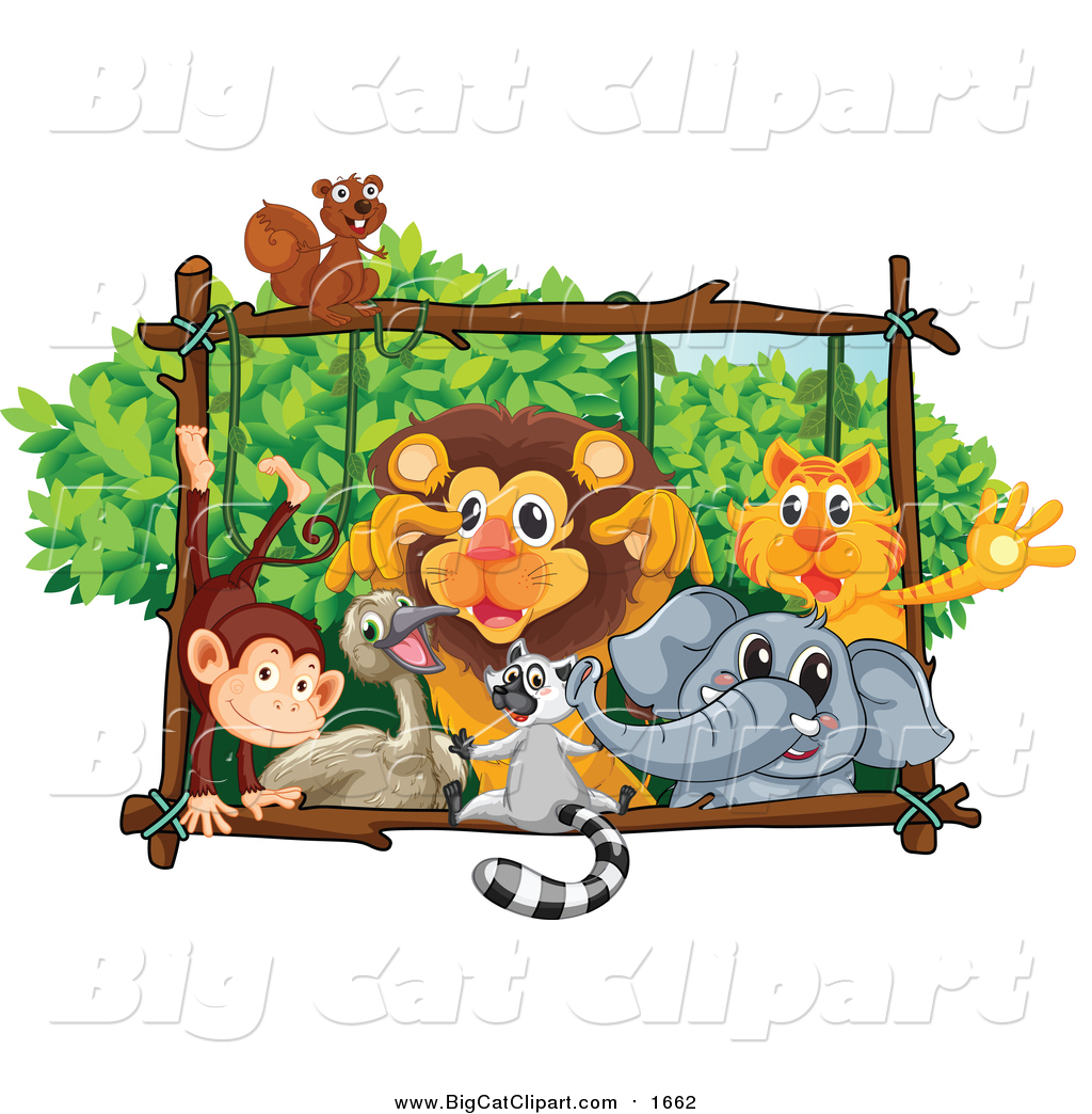 Royalty Free Zoo Stock Big Cat Designs.
