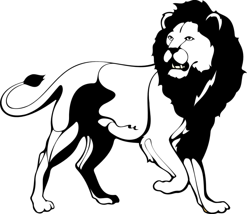 Lion Clipart Black And White & Lion Black And White Clip Art.