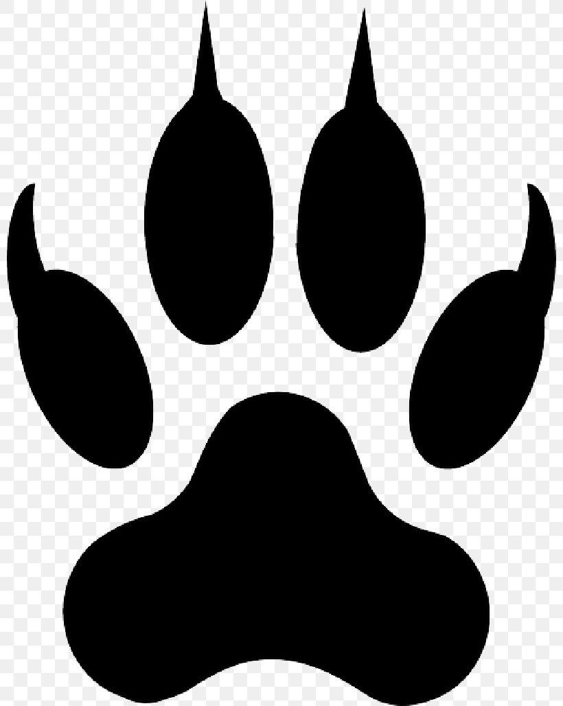 Lion Clip Art Tiger Wolf Liger, PNG, 800x1028px, Lion.