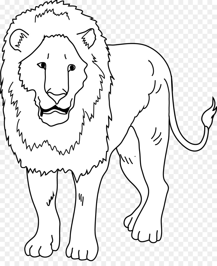 Lion Drawing clipart.