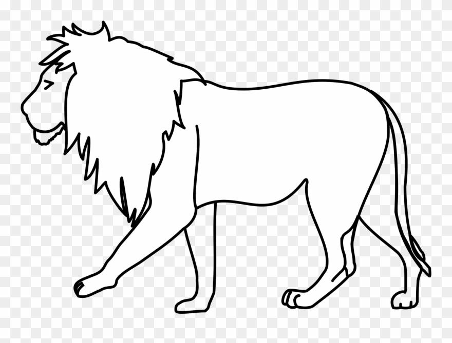 Lion Drawing Line Art Pencil.