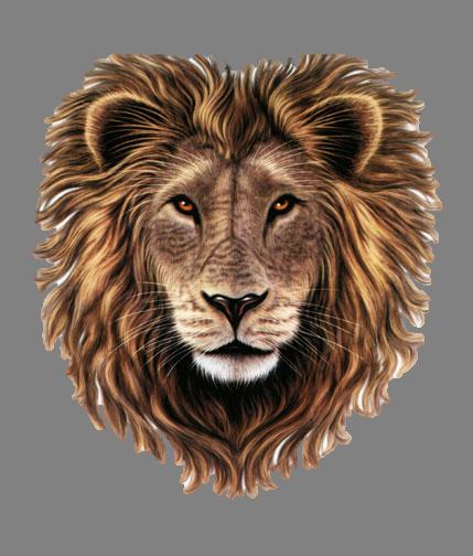 Lion Head PNG HD Transparent Lion Head HD.PNG Images..