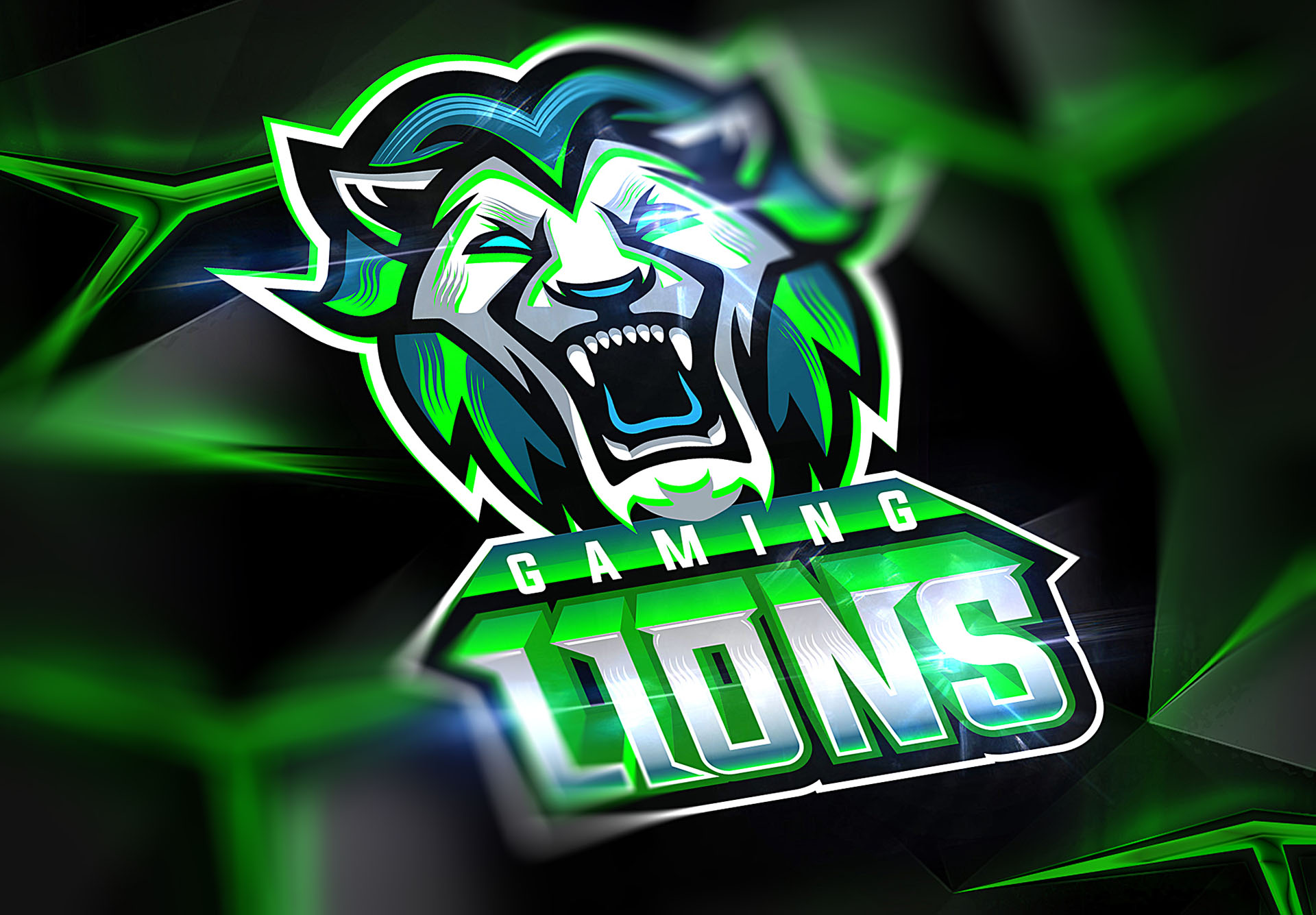 LIONS GAMING.