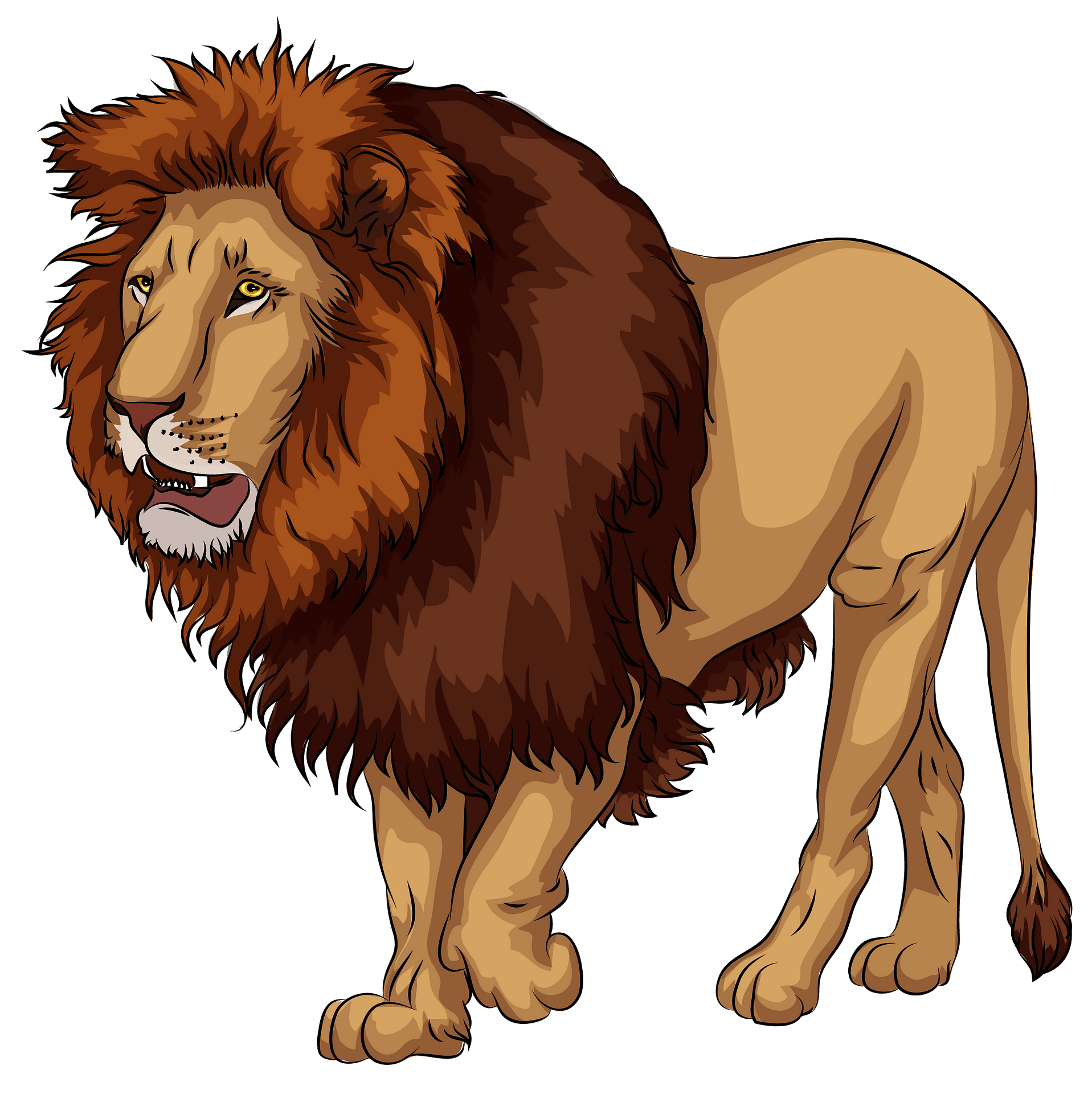 African Lion clipart. Free download..