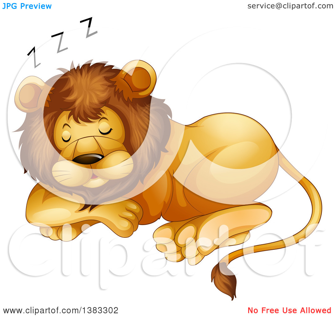 Clipart of a Male Lion Resting.