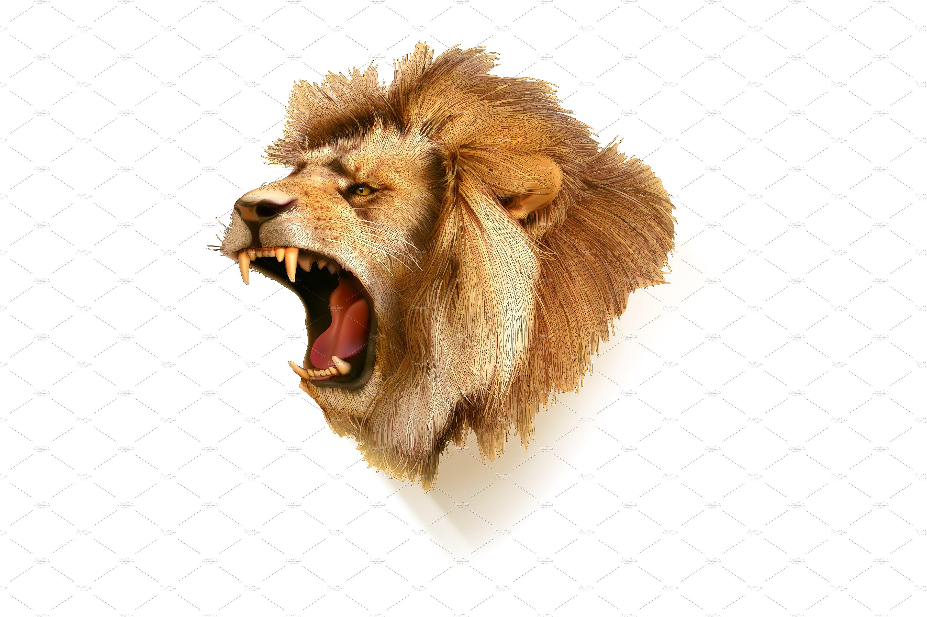 Roaring Lion Head Png & Transparent Imag #245579.