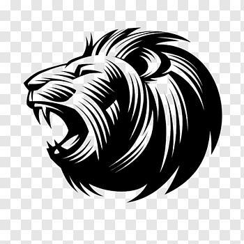 Sketch Lion cutout PNG & clipart images.