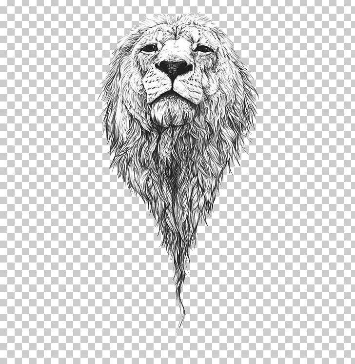 Lion Drawing Art Sketch PNG, Clipart, Animals, Art, Artist.