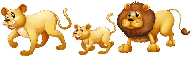Lion Clip Art Free Vector Art.