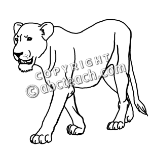 Lioness Clipart.