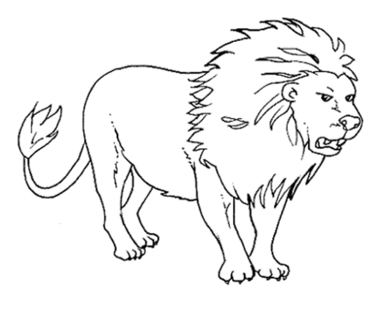 Lion Clipart Png Black And White.
