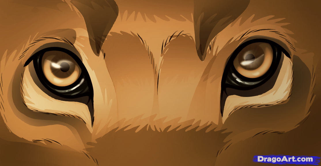 How to Draw Lion Eyes, Step by Step, safari animals, Animals, FREE.