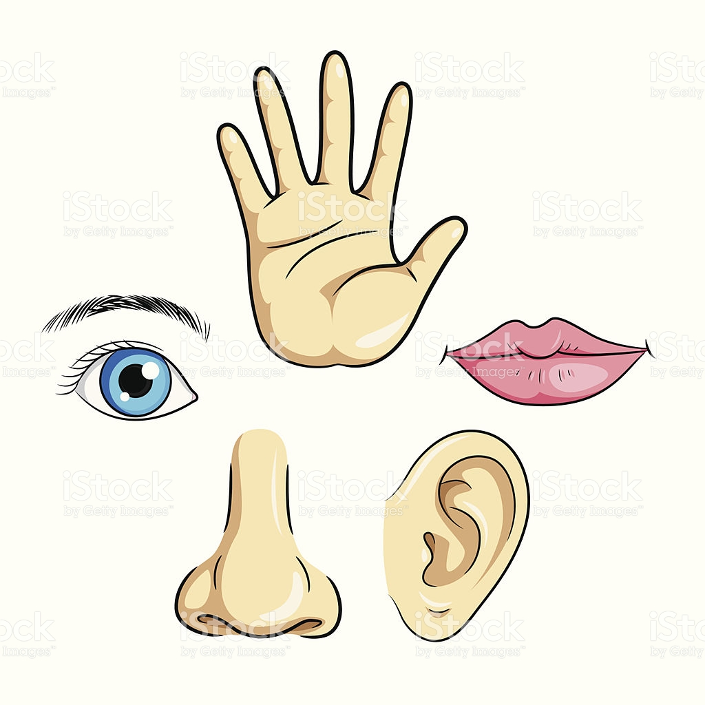 Eye Ear Nose Lips Hand stock vector art 461237537.