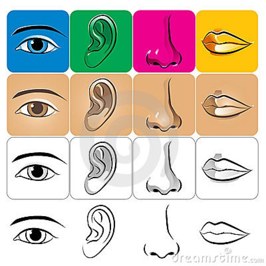 eyes nose lips clipart eyes nose lips clipart nose stock.