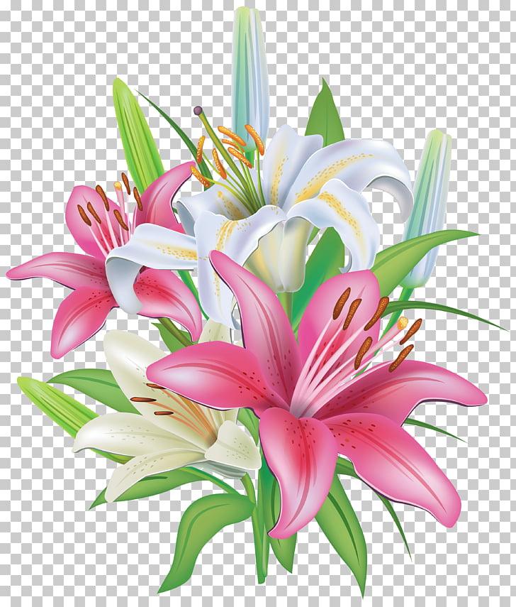 Lirio de pascua tigre lirio flor, lirio PNG Clipart.