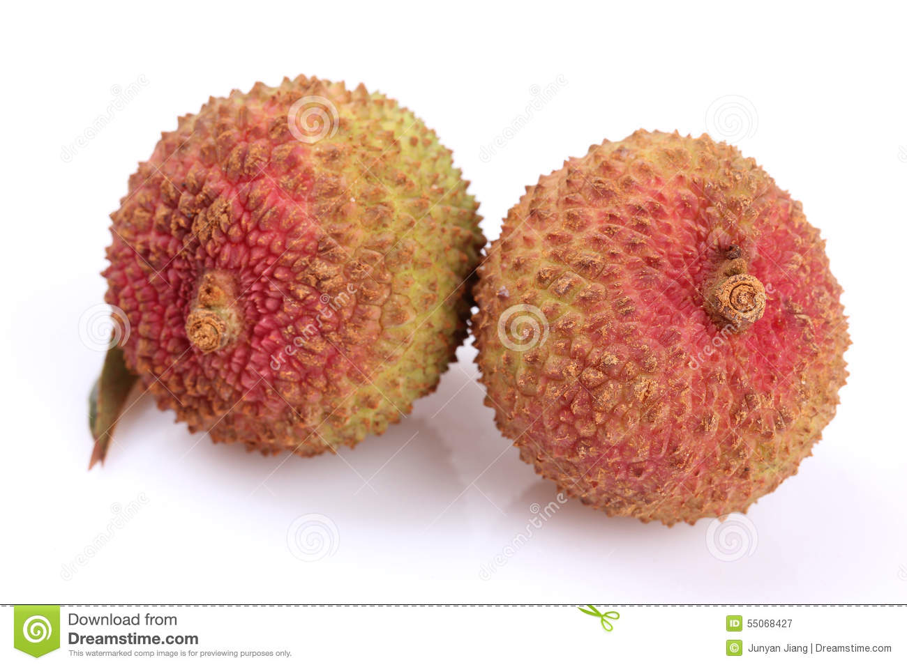 Litchi chinensis fruits clipart #9