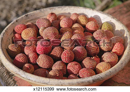 Stock Photograph of Ripe Lychee fruit (Litchi chinensis) in bowl.