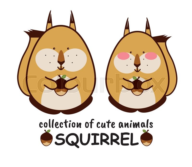 Collection of cute forest animals. Couple of European squirrels.