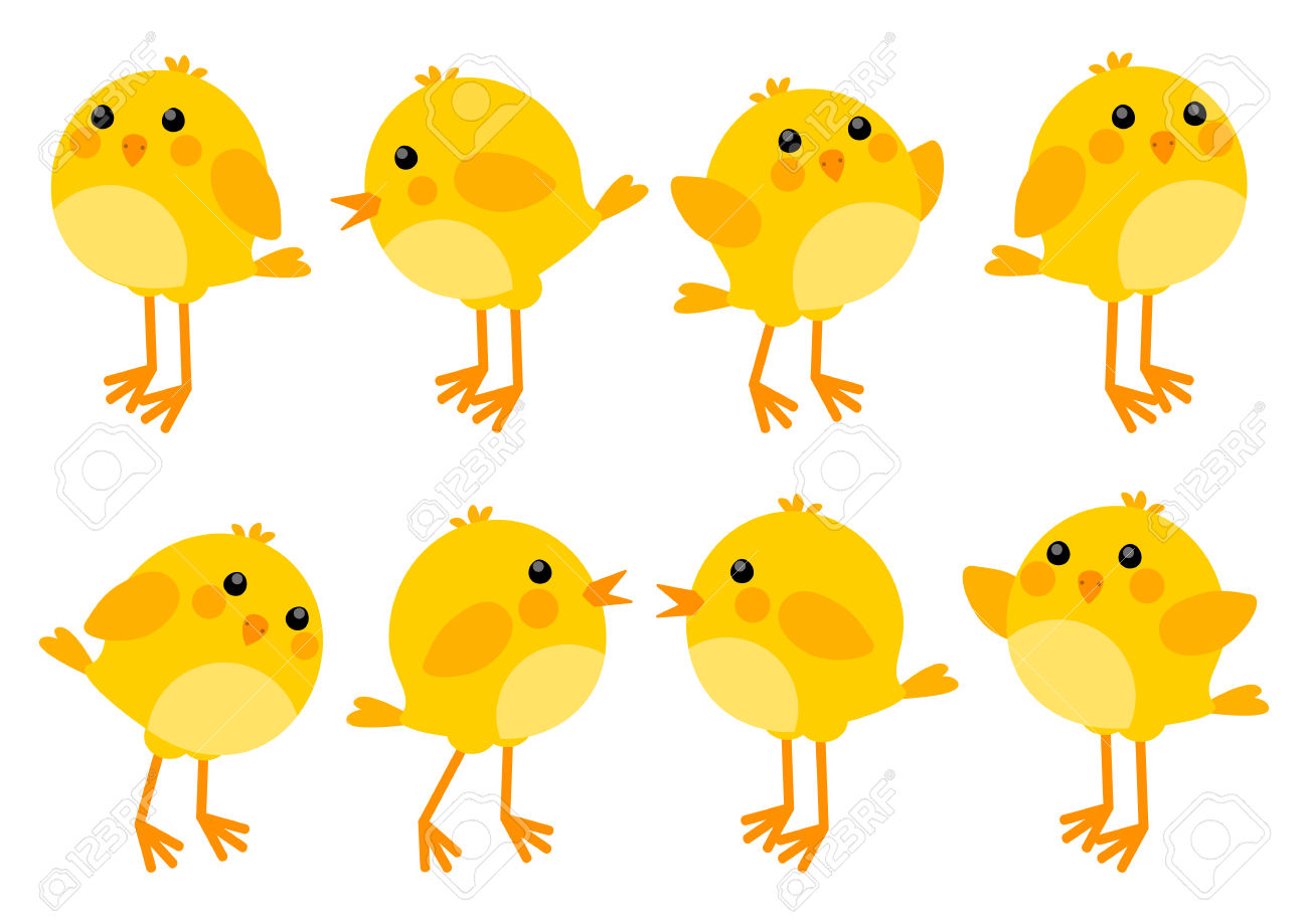 4,762 Baby Chick Stock Vector Illustration And Royalty Free Baby.