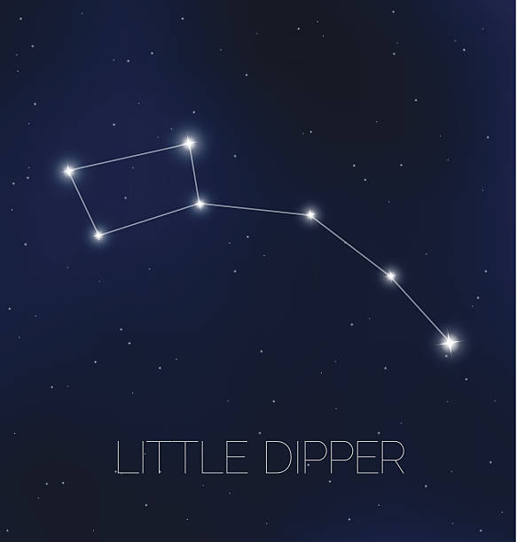 Little Dipper Illustrations, Royalty.