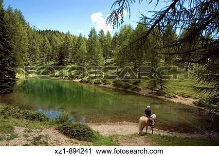 Stock Photography of Horseback trail riding by Laghetto delle.