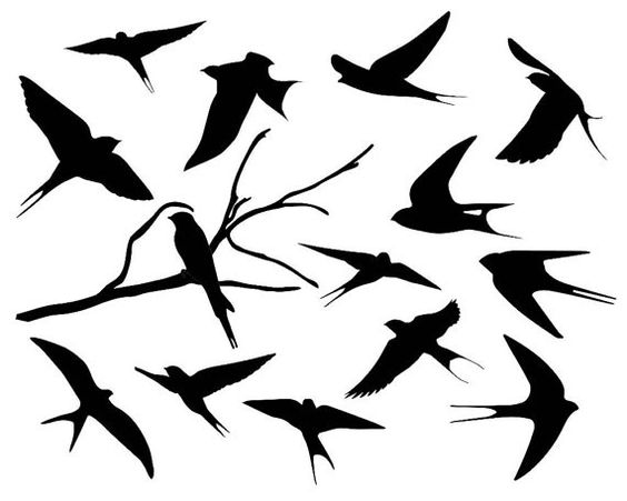 Swallow Silhouette Clipart Bird Silhouette by TheClipartPress.
