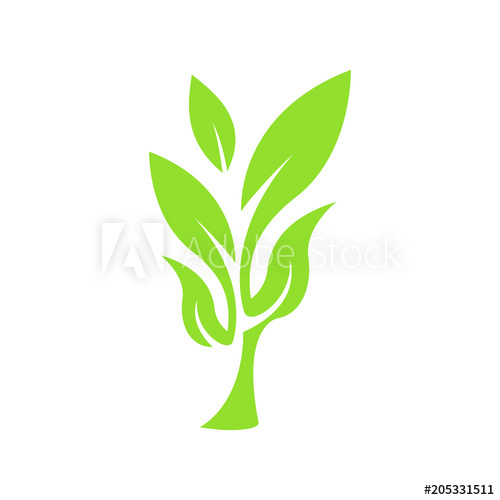 Little Tree Plannt Logo Icon Vector Leaf Symbol Simple.