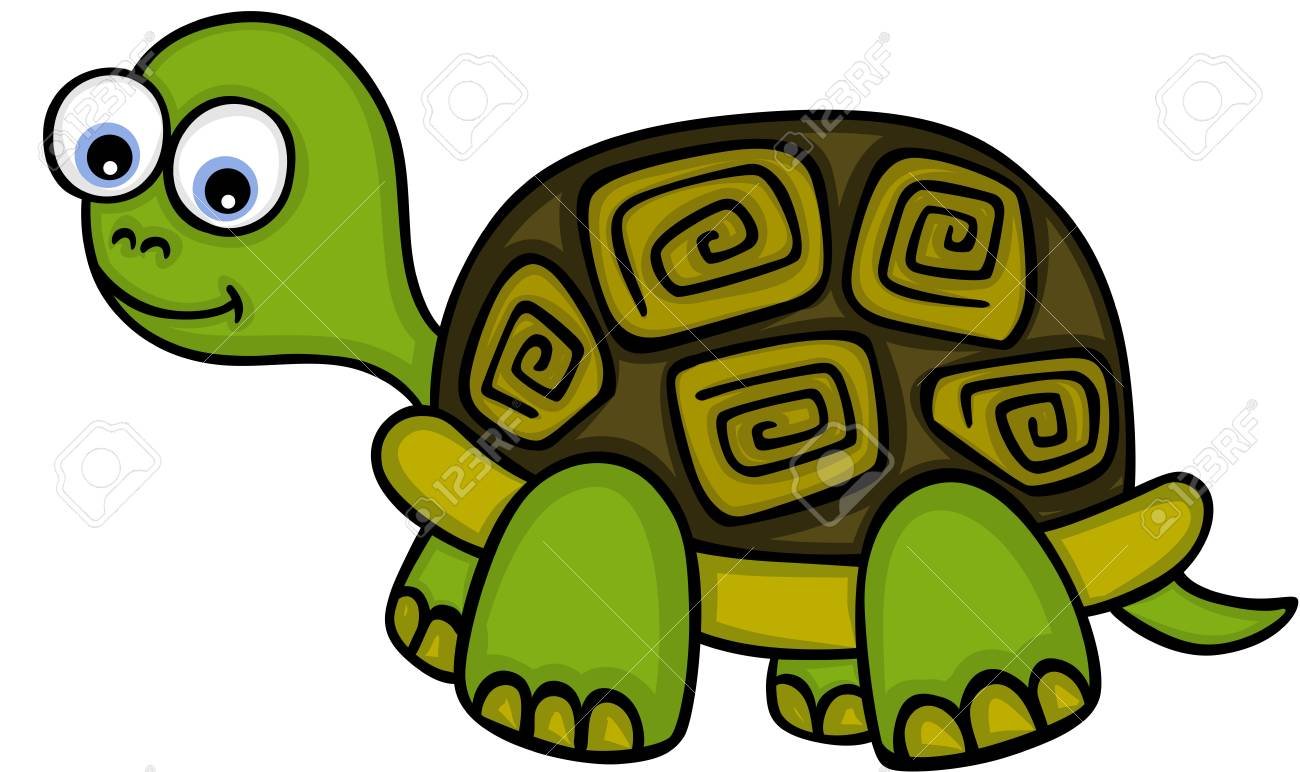 Cute little turtle Vector illustration..