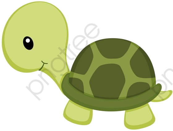 Little Green Turtle, Turtle Clipart, Web Page, Turtle PNG.