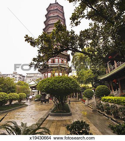 Stock Photo of Six Banyan Trees Temple (Liu Rong Si) x19430664.