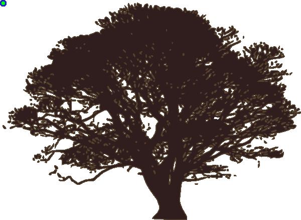 Similiar Live Oak Tree Silhouette Clip Art Keywords.
